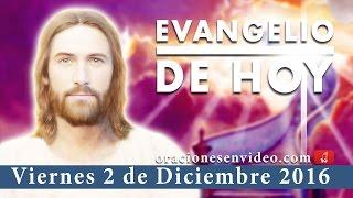 Evangelio de Hoy viernes 2 de Diciembre 2016 «Que os suceda conforme a vuestra fe» thumbnail