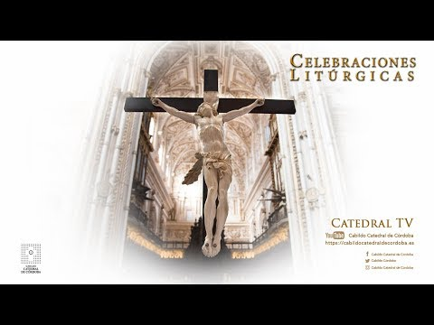 Solemne Eucaristía. IV Domingo de Pascua
