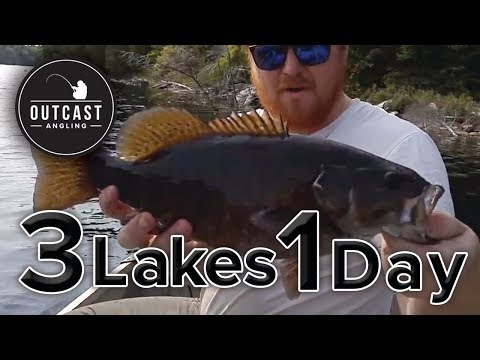 3 Lakes, 4 Species, 1 Day (Brook Trout, Lake Trout, Small Mouth Bass, Pike)