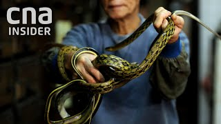 How Wildlife Trade Is Linked To Outbreaks - COVID-19, MERS & SARS