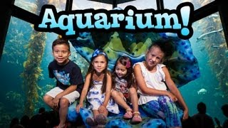 EvanTubeHD visits the MONTEREY BAY AQUARIUM & WILD THINGS!