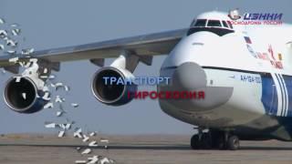 ЦЭНКИ   Космодромы России  2017