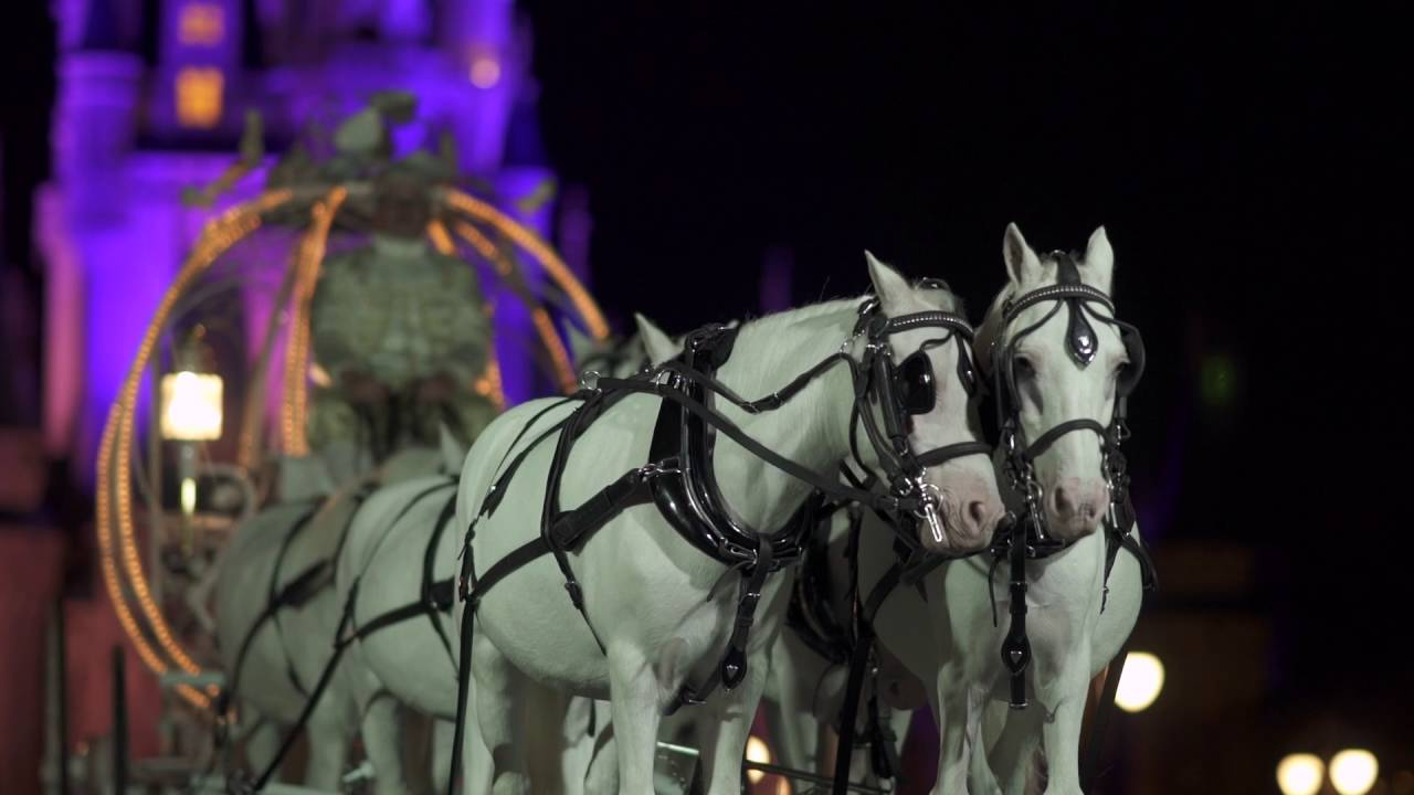 Disney Wedding Cost.Here S How Much A Fairy Tale Disney Wedding Really Costs