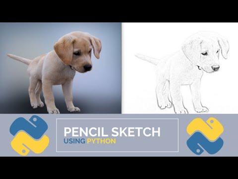 How to Convert A Photo To Pencil Sketch Using Python In 12 Lines Of Code