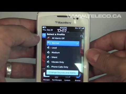 Blackberry Torch 9810 - Beginners Guide