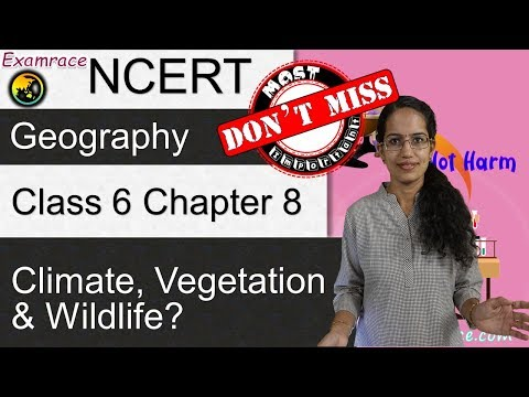 NCERT Class 6 Geography Chapter 8: Climate, Vegetation and Wildlife