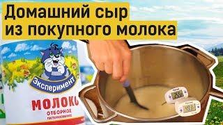 Домашний сыр из покупного молока: получится или нет?