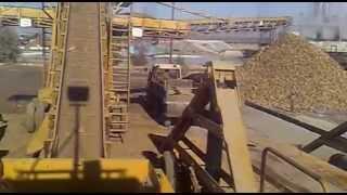 afyon şeker fabrikasında pancar boşaltma