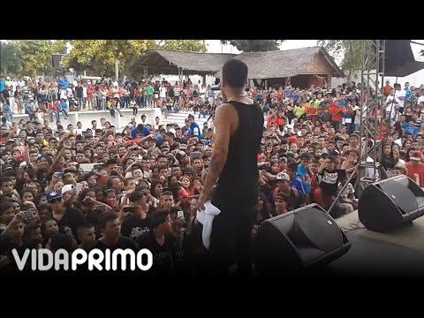 """Papi Wilo - """"en vivo"""" Suegra y Amor de la calle"""