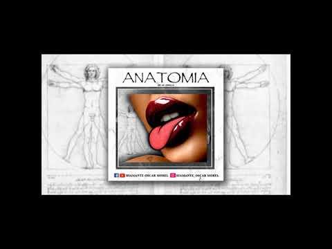 el-diamante-anatomía-(audio)