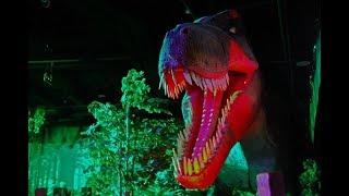 Шоу Динозавров в Центральном детском магазине на Лубянке / DINO CLUB