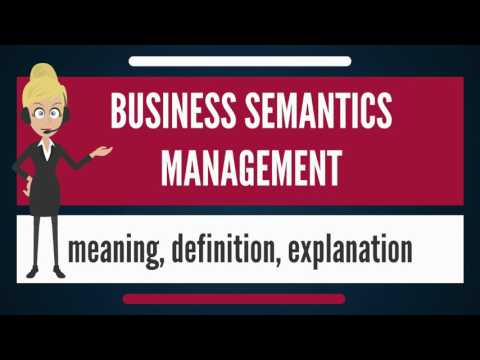 What is BUSINESS SEMANTICS MANAGEMENT? What does BUSINESS SEMANTICS MANAGEMENT mean?