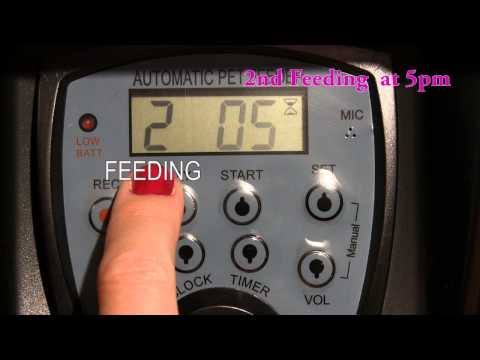 How to Program the CE Compass Large Automatic  Pet Feeder