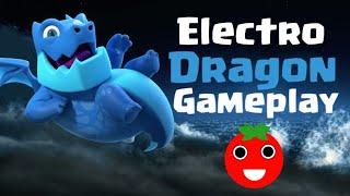 Electro Dragon Gameplay | Clash Royale🍅