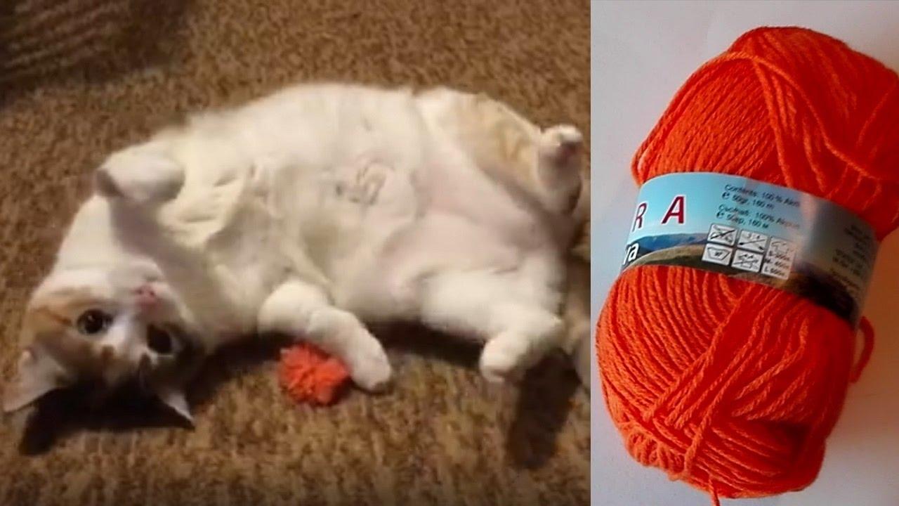 Направи си сам - играчка за коте ?