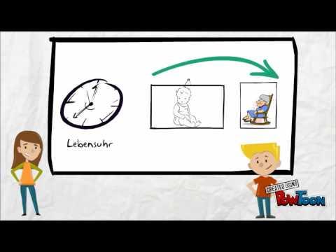 3 Gedichte Sprachliche Bilder Erkennen Klasse 6