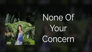 Jhené Aiko - None Of Your Concern [INSTRUMENTAL]