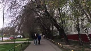 Погода в Москве. Пасмурно. Район Отрадное (СВАО)