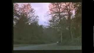 Il Mostro di Firenze -1986 intervallo