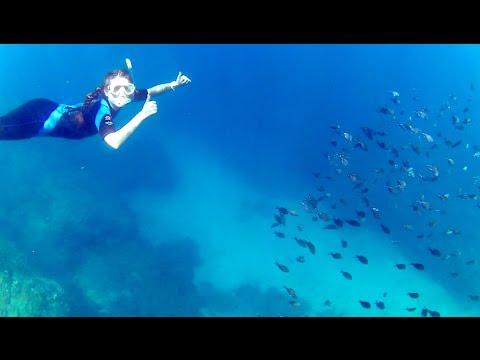 Snorkeling in Grenada Part 8 -- The World's First Underwater Sculpture Park