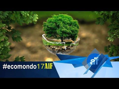 Fiera Ecomondo 2017 - L'Italia al primo posto per la Green Economy
