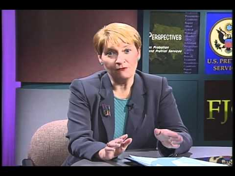 Perspectives on Probation and Pretrial Services