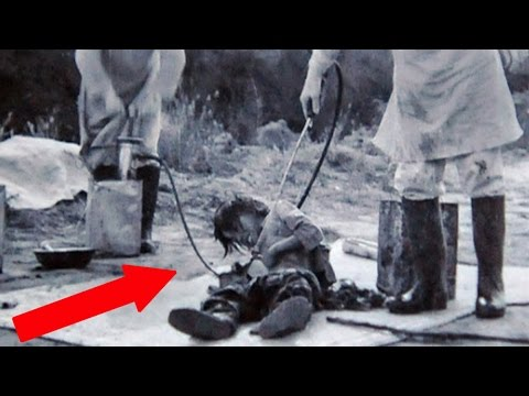 Most Atrocious Unit 731 Experiments - Most atrocious Unit 731 experiments & criminal actions!  Here are gruesome examples and tragic facts of the Japanese Unit 731.