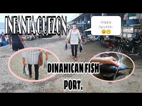 FISH MARKET OF INFANTA QUEZON, DINAHICAN FISH PORT//YONAH PARK