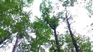 Camp Waubojeeg - Taylors Falls, Mn