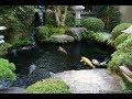 Beautiful Koi Pond Design Ideas