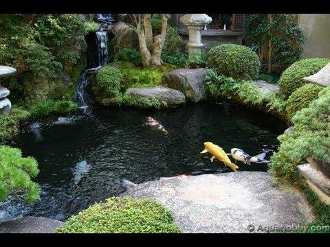 Beautiful Koi Pond Design Ideas - YouTube on Koi Ponds Ideas  id=21458