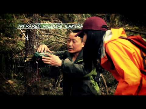 An Extraordinary Journey with The Nature Conservancy in China