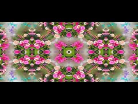 New mundari mix Dj song collage senoh hora re.....