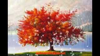 """Осенний вальс. Е. Дога мелодия из фильма """"Мой ласковый и нежный зверь"""""""