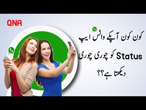 How To Check Who See Your Whatsapp Status Secretly 2019 || QNA