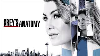Baixar The Wind and The Wave - Human Beings (Audio) [GREY'S ANATOMY - 14X15 - SOUNDTRACK]
