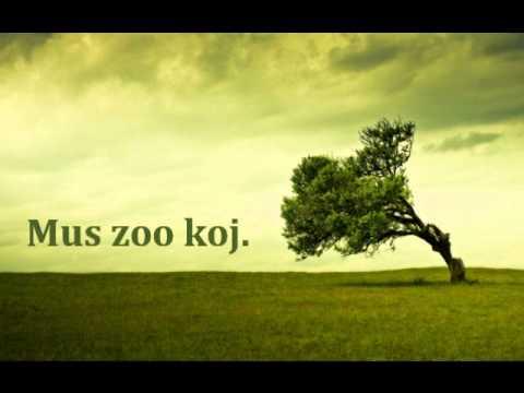 lightofday ft. Sua Yang - Mus Zoo Koj thumbnail