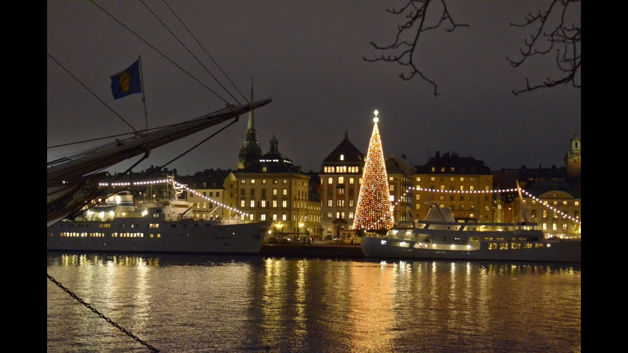THE TALLEST CHRISTMAS TREE IN THE WORLD? @ Skeppsbron