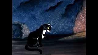 Я кот, хожу сам по себе и гуляю где вздумается