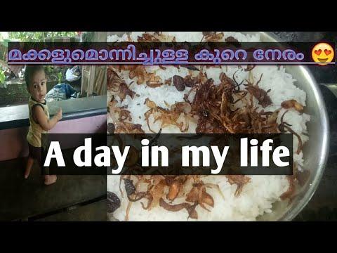 Download #dayinmylife #sinusvlogs makkalude koode kure neram| malayalam vlog| sinu's vlogs by fasna basheer😀😂