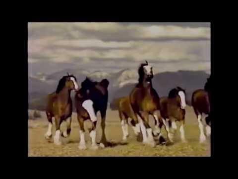 Top 10 'Budweiser' Super Bowl commercials 1