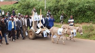 Senate aspirant rides on a donkey cart as he was heading to be cleared by IEBC