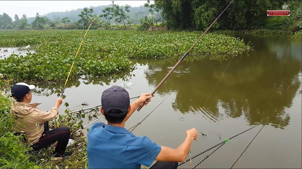 Kết quả hình ảnh cho dân câu cá