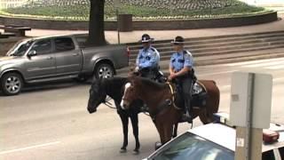 Конная полиция Хьюстона