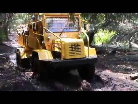 JINLU 4WD TRACTOR (untuk gambut/ for peatland plantation)