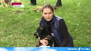 Дворянское собрание. 4 октября 2012 г. Первый канал.