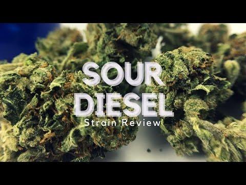 Sour Diesel Cannabis Strain Review - ISMOKE