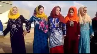 حفلات سورية - حماة  احمدالابراهيم