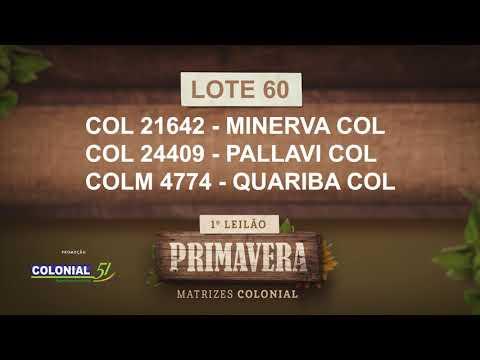 LOTE 60   COL 21642,24409,COLM 4774