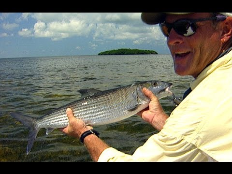 Biscayne Bay Fishing the Flats for Bonefish with Live Shrimp